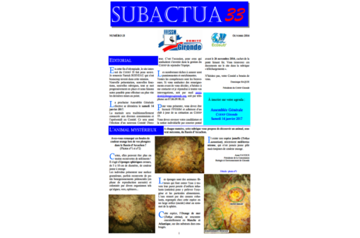 Subactu 33 n°29