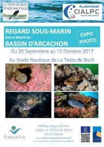 Expo Photos @ stade Nautique La Teste